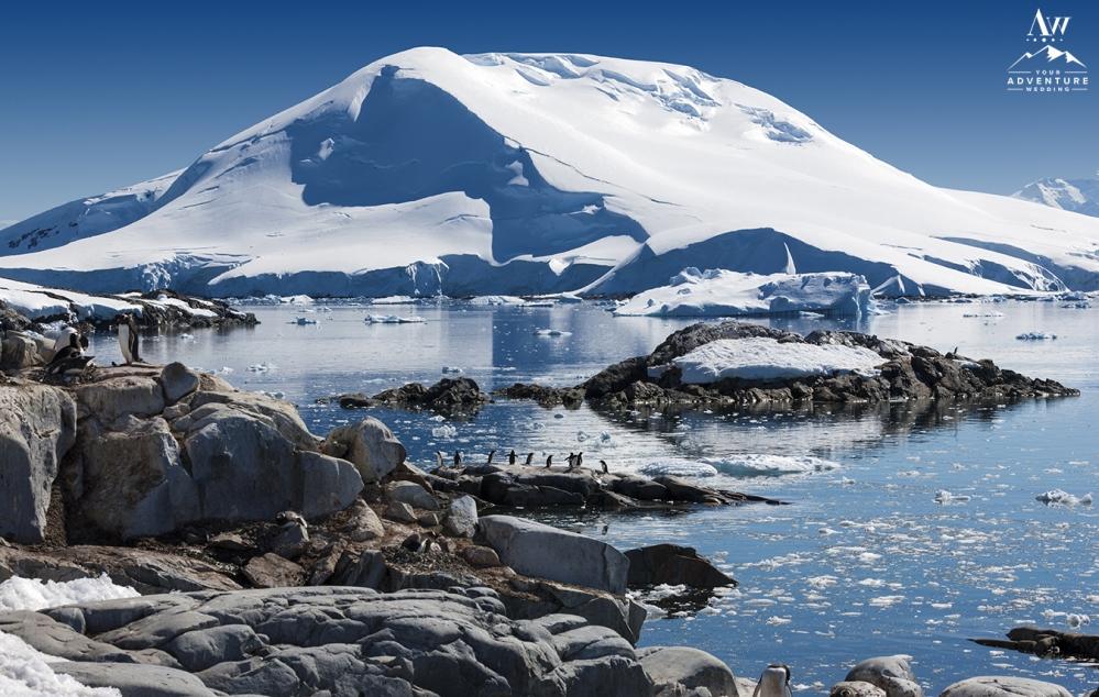 Antarctica Wedding Adventure