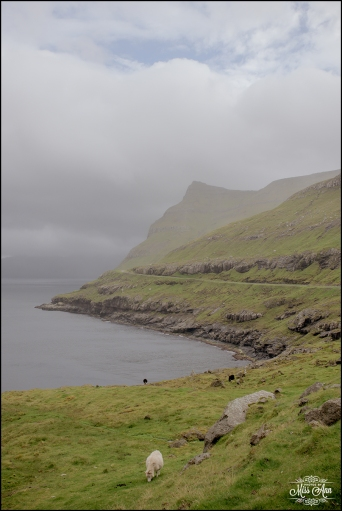 Faroe Islands Wedding Locations-7