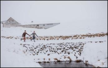 Snowy Iceland Wedding Photos