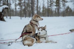 Finland Wedding Igloo Hotel by Your Adventure Wedding-24