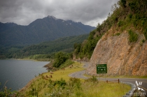 Patagonia Wedding Locations - Your Adventure Wedding Patagonia Rainforest