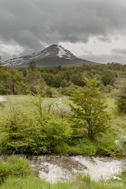 Tierra del Fuego Wedding - Patagonia Wedding - Your Adventure Wedding-6