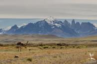 Torres del Paine Patagonia Wedding - Your Adventure Wedding-8