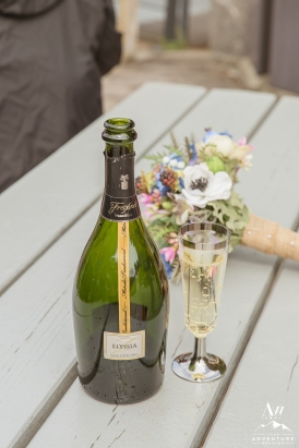 norway-wedding-champagne-toast