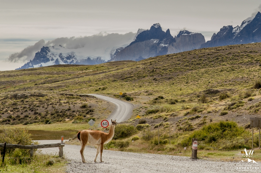 adventure-wedding-photographer-iceland-weddings-norway-weddings-patagonia-weddings-19