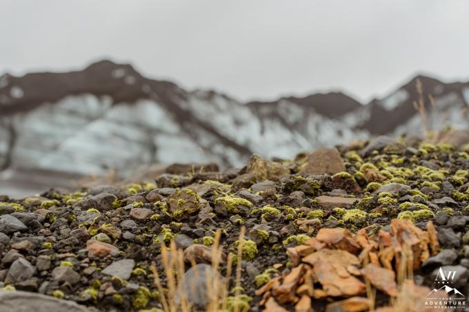 Iceland Wedding Photographer-Your Adventure Wedding-54